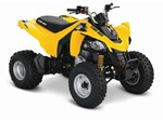 Can-Am DS 250 2014