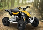 Can-Am Can-Am DS 450 X xc 450 2015
