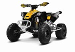 Can-Am DS 450 X xc 2015