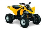 Can-Am DS 250® 2014