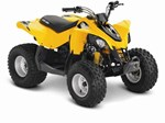 Can-Am DS 90 2015