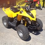 Can-Am DS 90 2013