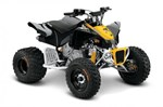 Can-Am DS 90™ X® 2016