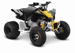 Can-Am DS X 90 2016