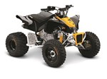 Can-Am DS 90  X 2016