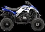 Yamaha Raptor 90 2017