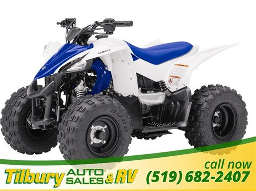 print listing yamaha raptor 50 2017 new atv for sale in. Black Bedroom Furniture Sets. Home Design Ideas