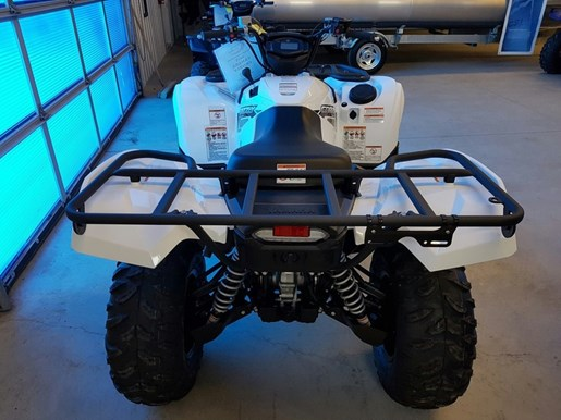 2017 Yamaha Grizzly EPS Alpine White Photo 3 of 7