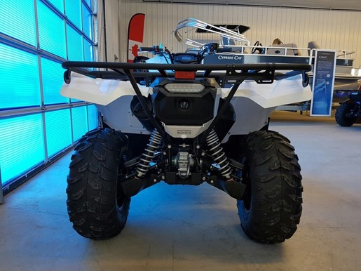 2017 Yamaha Grizzly EPS Alpine White Photo 6 of 7