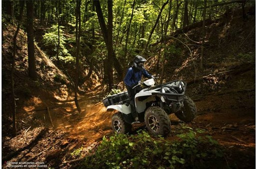 2017 Yamaha Grizzly EPS Alpine White Photo 7 of 7