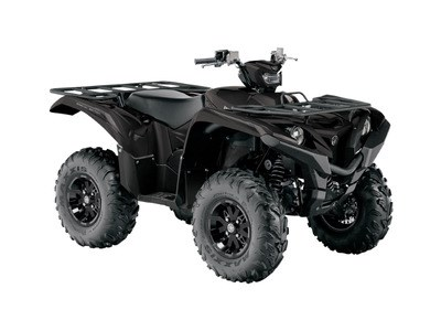 2017 Yamaha Grizzly EPS SE Photo 1 of 1