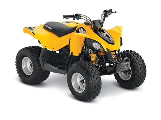 2016 Can-Am DS 90 Photo 1 of 1