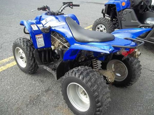 Yamaha wolverine 450 4x4 2006 used atv for sale in for Yamaha wolverine 450 for sale