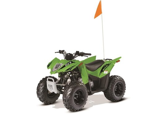 2017 Arctic Cat DVX 90 Photo 1 of 1