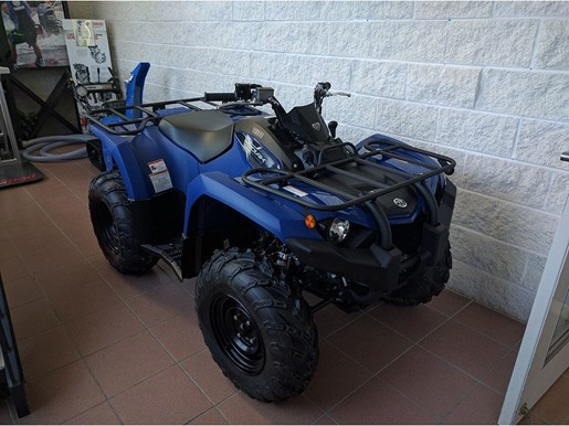 2018 Yamaha Kodiak 450 Photo 2 of 11