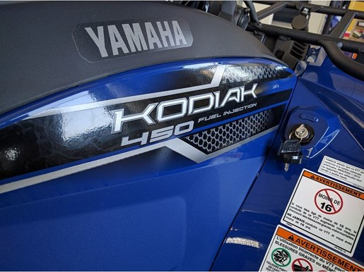 2018 Yamaha Kodiak 450 Photo 10 of 11