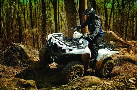 2018 Yamaha Grizzly EPS Photo 5 of 5
