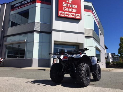 2018 Yamaha Kodiak 700 EPS SE Light Metallic Gray Photo 4 of 4