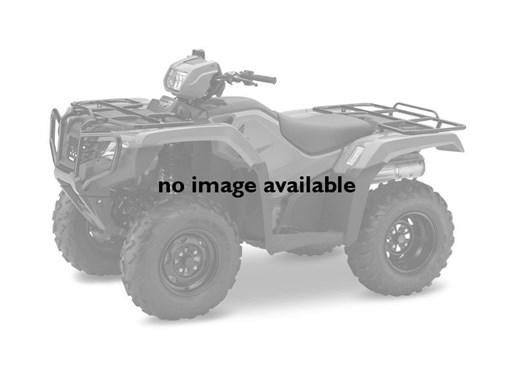 2018 Honda TRX500 Foreman Camo Photo 1 of 1