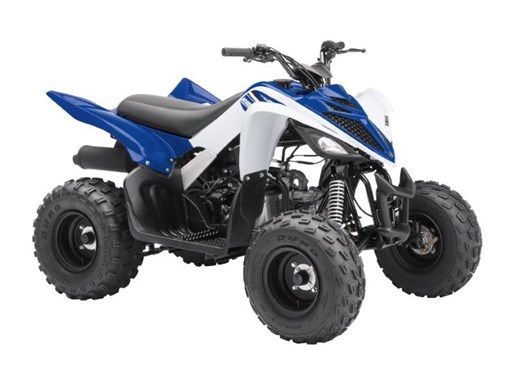 2018 Yamaha Raptor 90 Photo 1 of 2