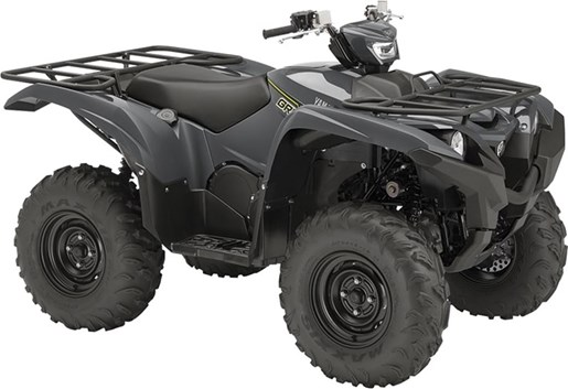 2018 Yamaha Grizzly EPS Photo 10 of 11