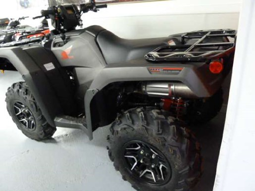 2018 Honda TRX500 Rubicon DCT Deluxe Photo 3 of 3