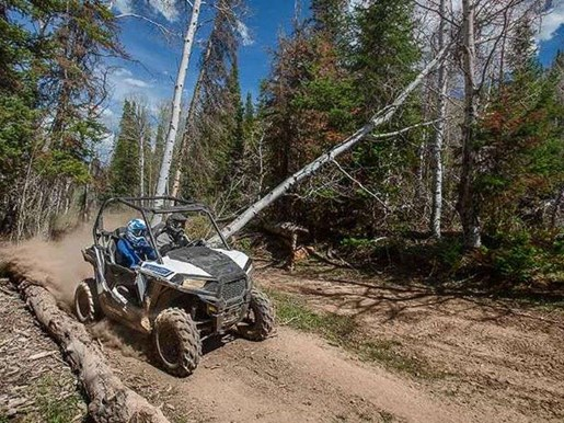 2018 Polaris RZR 900 WHITE LIGHTNING / 37$/sem Photo 4 of 5
