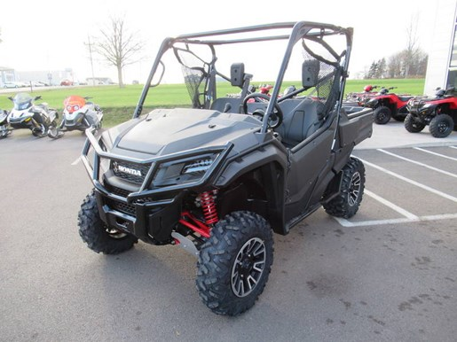 2018 Honda Pioneer 1000 Deluxe LE Photo 8 of 13