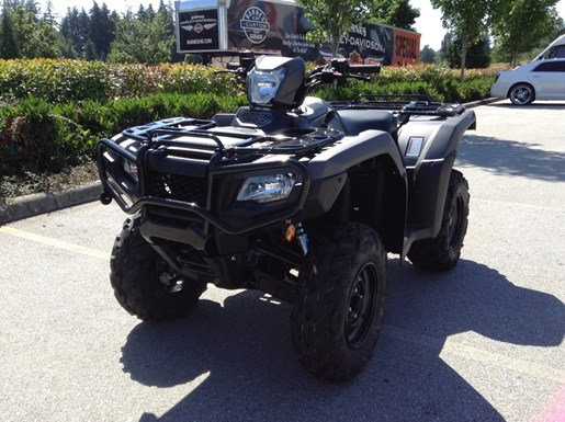2019 Honda Rubicon Photo 2 of 5