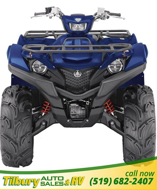 2019 Yamaha GRIZZLY EPS SE Photo 3 of 3