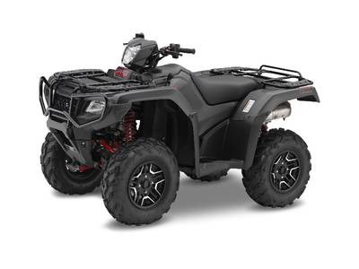 2019 Honda TRX500 Rubicon DCT DELUXE Photo 1 of 1