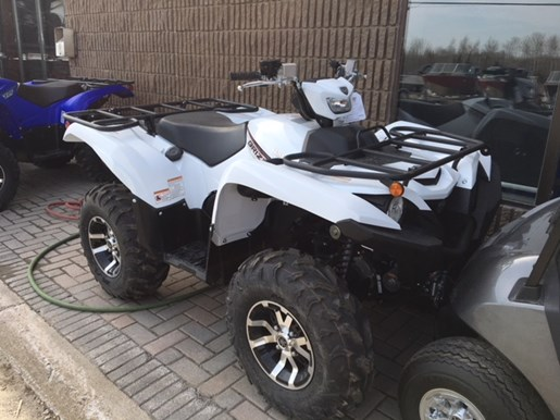 2018 Yamaha Grizzly Photo 1 of 2