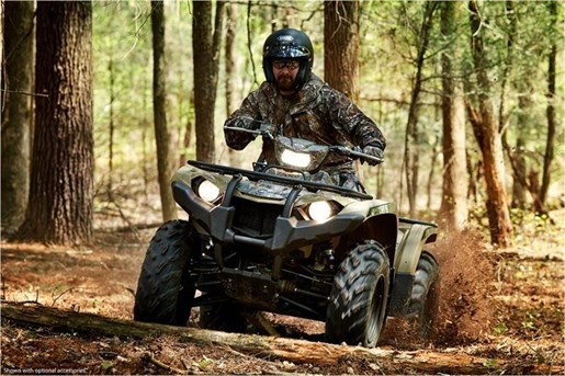 2018 Yamaha KODIAK 450 EPS Photo 6 of 14