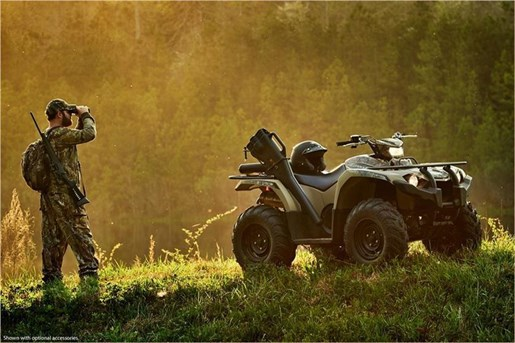 2018 Yamaha KODIAK 450 EPS Photo 11 of 14