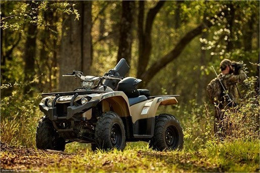 2018 Yamaha KODIAK 450 EPS Photo 13 of 14