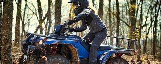 2019 Yamaha Kodiak 450 EPS SE Photo 4 of 8