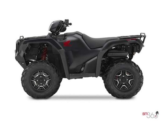2019 Honda RUBICON DCT DELUXE Photo 1 of 2