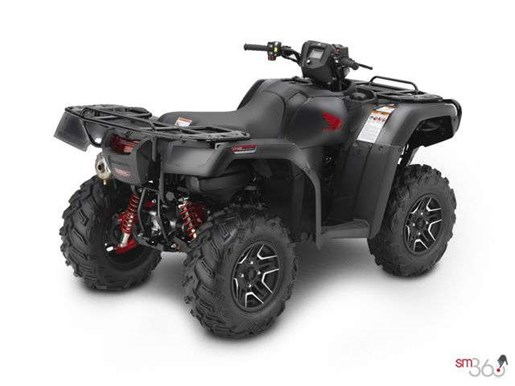 2019 Honda RUBICON DCT DELUXE Photo 2 of 2