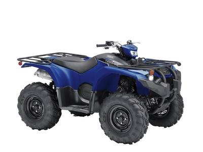 2019 Yamaha Kodiak 450 EPS Photo 1 of 1