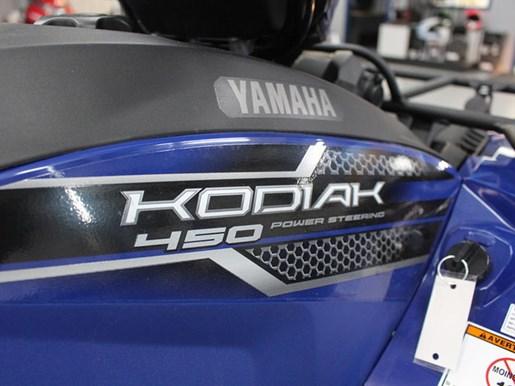 2019 Yamaha Kodiak 450 EPS Photo 9 of 9
