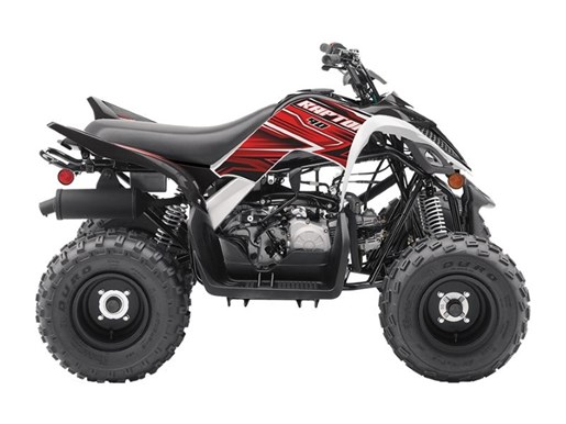 2019 Yamaha Raptor 90 Photo 1 of 1