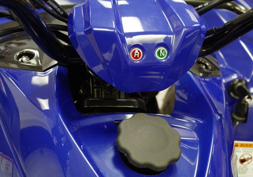 2019 Yamaha Grizzly 90 Photo 8 sur 11