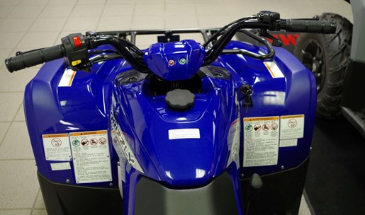 2019 Yamaha Grizzly Photo 5 of 11