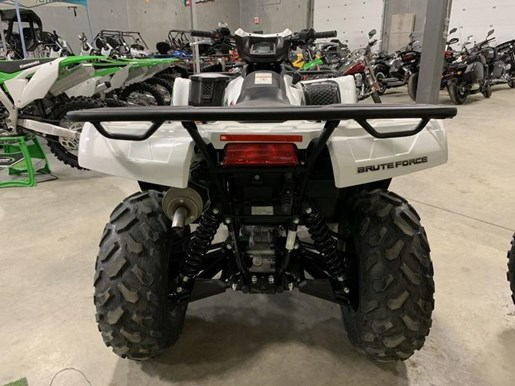 2019 Kawasaki Brute Force 750 4X4i EPS Photo 3 of 7