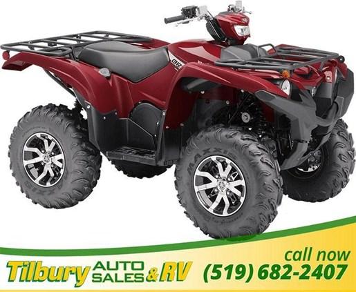 2019 Yamaha GRIZZLY EPS Photo 2 of 2