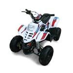 GIO Motors GIO Mini-Blazer 110 2015