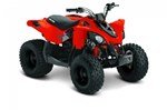 Can-Am DS 90™ 2017