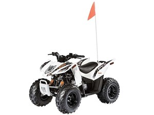 Arctic Cat DVX 90 2016