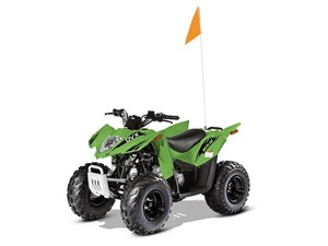 Arctic Cat DVX 90 2017