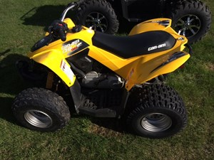 Can-Am DS 90™ 2014